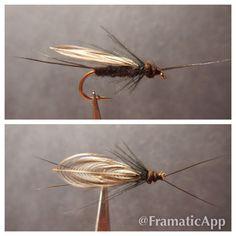 Black Stonefly - Fly Fishing