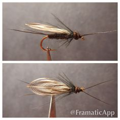Black Stonefly - Fly Fishing