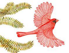 BUY 2 prints  and get 1 FREE sale Cardinal print by TevaGallery, $18.00