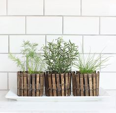 Use clothespins to DIY these rustic planters.