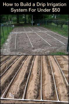 Save Time and Conserve Water by Building a Drip Irrigation System for Under 50 Potager Garden, Garden Landscaping, Farm Gardens, Outdoor Gardens, Garden Watering System, Watering Plants, Drip Irrigation System, Garden Types, Water Conservation