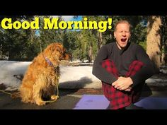Quick Sunrise Morning Yoga Routine - Yoga Stretches and Flexibility to Start Your Day #sunriseyoga - YouTube