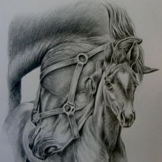 Mothers Love Series 2 Amazing Drawings, Mothers Love, Charcoal, Horses, Animals, Color, Animales, Animaux, Colour