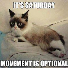#Grumpy Saturday