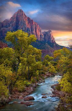 The Watchman sopra il fiume Virgin in Zion Canyon durante la visualizzazione foglie d'autunno.