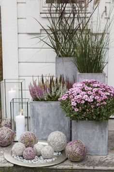 Gardening Autumn - Pixel - With the arrival of rains and falling temperatures autumn is a perfect opportunity to make new plantations Big Planters, Concrete Planters, Front Door Planters, Fall Planters, Modern Planters, Concrete Garden, Outdoor Planters, Plants For Front Door, Flowers In Planters