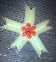 Pasta stars