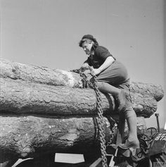 A recruit fastening chains around tree trunks on a wagon at the Women's Land Army Training Camp at Culford in Suffolk, England. Land Girls, Army Girls, Women's Land Army, White Tractor, Army Training, Tree Trunks, Old Pictures, Vintage Pictures, United States Army
