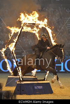 London, UK. 20th Dec, 2014. #London International #Horse Show at Olympia © Leo Mason sports photos/Alamy Live News