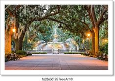 Savannah, Georgia, USA at Forsyth Park Fountain. Free art print of Forsyth Park. Visit Savannah, Savannah Chat, Savannah Georgia, Georgia Usa, Free Art Prints, Canvas Art Prints, Forsyth Park, Grand Canyon River, Date Night Restaurants