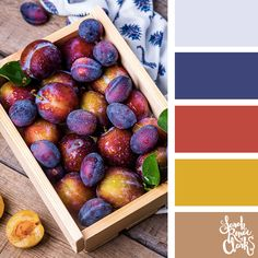 Warm fruits color Inspiration | Click for more color combinations and color palettes inspired by the Pantone Fall 2017 Color Trends, plus other coloring inspiration at http://sarahrenaeclark.com | Colour palettes, colour schemes, color therapy, mood board, color hue