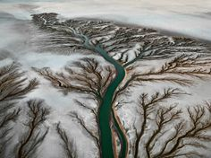 Edward Burtynsky - birds eye view of a river, visually portraying the simple idea of growth as he has specifically chosen to photograph the tributary sections of the river, representing continuation