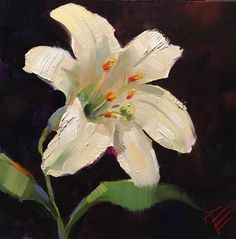 "Daily Paintworks - ""Easter Lily"" - Original Fine Art for Sale - © Krista Eaton"