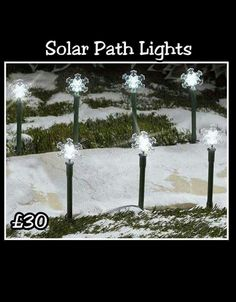 Light up your path with these solar path lights.