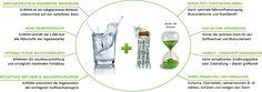 Rasch, gesund und nachhaltig abnehmen  www.stachers.at  Eine Kur mit reiner Natur Fett, Metabolism, Sustainability, Weight Loss, Health, Purchase Order