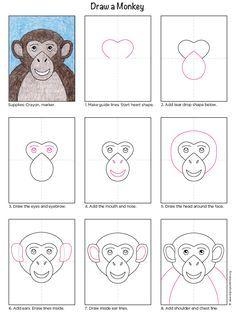 Monkey diagram