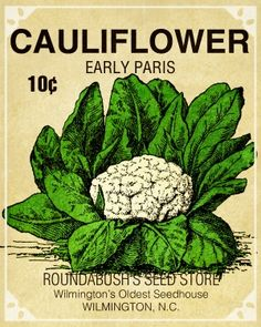 wanting a set. Vintage Labels, Vintage Ephemera, Vintage Posters, Growing Cauliflower, Seed Packaging, Packaging Design, Garden Plants Vegetable, Seed Shop, Vintage Seed Packets