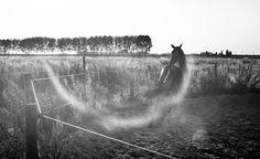 Tasting Freedom by Micha van Neerwijk on 500px