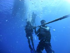 #scuba #hawaii http://rainbowscuba.com/hawaii-scuba-prices.html @rainbowscuba