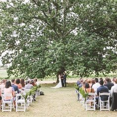 Kellie and Josh's Beautiful Bendooley Estate Wedding in Berrima Got Married, Getting Married, All Inclusive Packages, Lasting Love, Tree Wedding, Oak Tree, Dolores Park, Packing, Pictures
