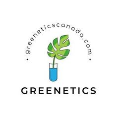 Greenetics - Exotic and Rare Plants for sale Canada Rare Plants, Exotic Plants, Tropical Plants, Succulents For Sale, Pet Safe, Plant Sale, Spring Is Here, Flora, Shops