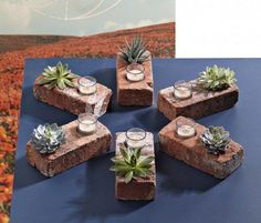 Brick planters with candles. An interesting idea for an indoor guest display, though these will need to be repotted fairly quickly.