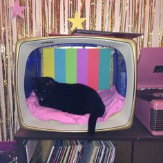 darladoherty: Did a little crafting to make a new backdrop for Neko Chan's new vintage TV cat bed. Eventually I'd like some shaggy, furry, kind of bedding, but a pink sheet will do for now.