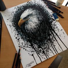 Eagle Splatter Drawing by AtomiccircuS on DeviantArt