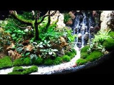 Fake waterfall inside an aquarium - Mark Aquascape 2014
