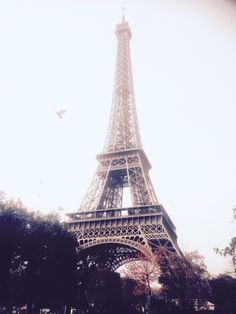 The Eiffel Tower In Paris, So Beautiful.