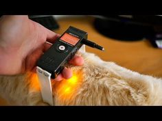 (5) The Ultimate DIY Microphone (super low self-noise!) - YouTube Diy Microphone, Photography And Videography, Diy Photo, Self, Annoying Things, Audio, Diy Projects, Studio Interior, Viral Videos