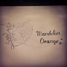 Spider web illustration for Mandolin Orange Whiteboard Pens, Americana Music, Country Bands, Mandolin, Create A Logo, Spider, Folk, Orange, Drawings