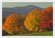 Vermont in the Fall!