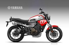 Faster Sons, the Coolest Brothers - Yamaha XSR700 Forum