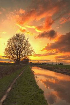 Sunset convergence~Explored   The Trent & Mersey canal towar…   Flickr