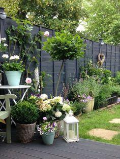 30 Adorable Black Garden Ideas For Amazing Garden Inspiration - Backyard Garden Inspiration Grey Gardens, Small Gardens, Vertical Gardens, Patio Gardens, Small Courtyard Gardens, House Gardens, Unique Gardens, Amazing Gardens, Beautiful Gardens