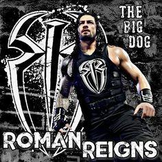 Wwe Superstar Roman Reigns, Wwe Roman Reigns, Funny Sports Memes, Sports Humor, Belive In, Wwe T Shirts, Roman Regins, The Shield Wwe, Wwe World