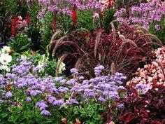 rabaty kwiatowe przydomowe - Szukaj w Google