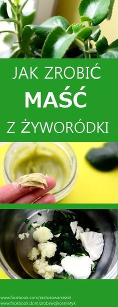 Magic Herbs, Polish Recipes, Natural Health Remedies, Slow Food, Nutrition Tips, Healthy Tips, My Favorite Food, Health And Beauty, Herbalism