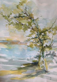 Tree Study Robin Miller-Bookhout