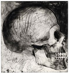 JIM DINE (American, b. The Side View 1986 etching, soft-ground etching, and drypoint on paper sheet: 47 x 44 Jim Dine, Vanitas, Drypoint Etching, Observational Drawing, Etching Prints, A Level Art, Gcse Art, Art Graphique, Natural Forms