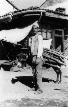 Original Photo: Albania circa 1941, Young man transporting wood with donkey