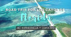 La segunda etapa de nuestra ruta por Florida de 19 días, empezó con un Road Trippor los Cayos de Florida, llegando hasta Key West. Llegamos a plantearnos no hacer este viajeen cochepor los Cayos por lo caros que eran los alojamientos en Cayo Hueso. Finalmente decidimos que valía muchísimo la pena hacer esta ruta Florida, Disney Trips, Key West, Road Trip, Tours, Travel, Viajes, Lodges, Paths
