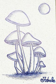 # mushroompassion