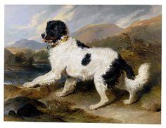 Landseer, Edwin Henry - Lion- A Newfoundland Dog