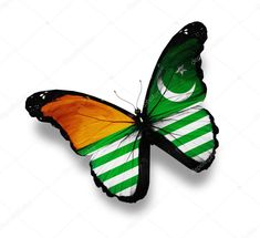 Azad Kashmir, Marketing Flyers, White Stock Image, Birds In Flight, Flyer Design, Pakistan, Plant Leaves, February, Royalty