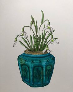1,065 vind-ik-leuks, 41 reacties - ♡ Plants & Illustrations ♡ (@drawingplantlady) op Instagram: 'Snowdrops in a ginger jar drawing ✍🏻 . . . . . #snowdrops #spring #sneeuwklokjes #gemberpot…'
