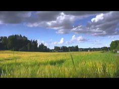 Beautiful Finland in the summertime