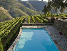 belle piscine à niveaux qui surplombe une vigne, entourage piscine en pierre naturelle et bois
