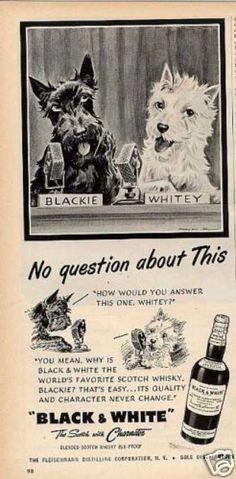 Black & White - News